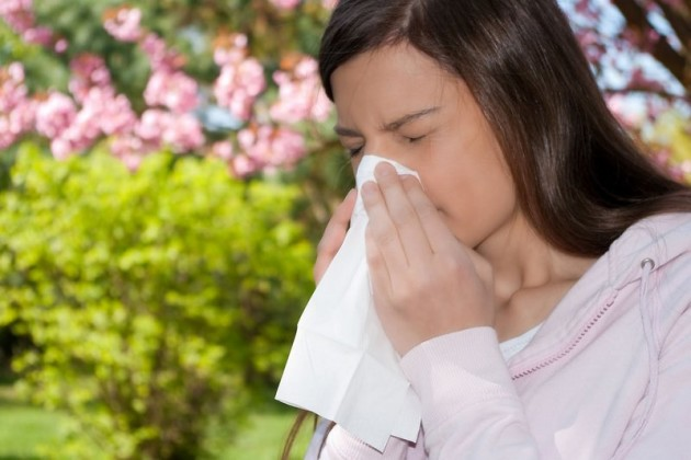 Насморк - один из основных проявлений аллергии