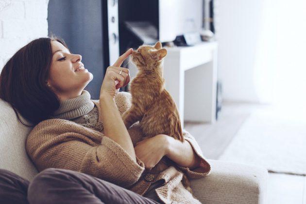 Кот с хозяйкой: аллергия как причина лор-заболеваний