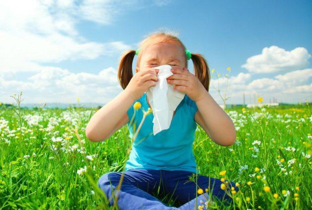 Аллергический ринит у детей обостряется при контакте с аллергеном