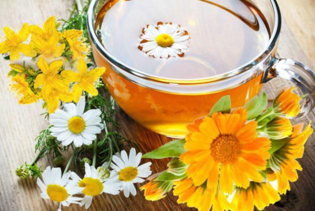 Отвары лекарственных растений применяются при лечении острого синусита в домашних условиях
