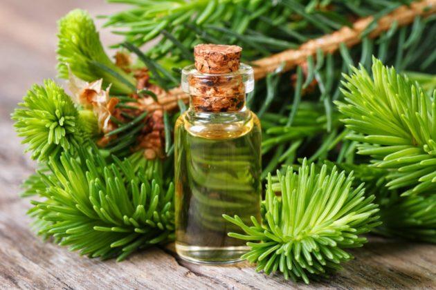 В состав капель Пиносол входит эфирное масло сосны