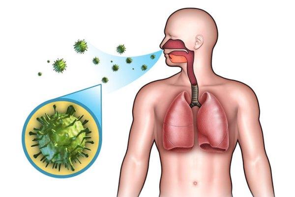 воздушно-капельный путь заражения стрептококком в носу